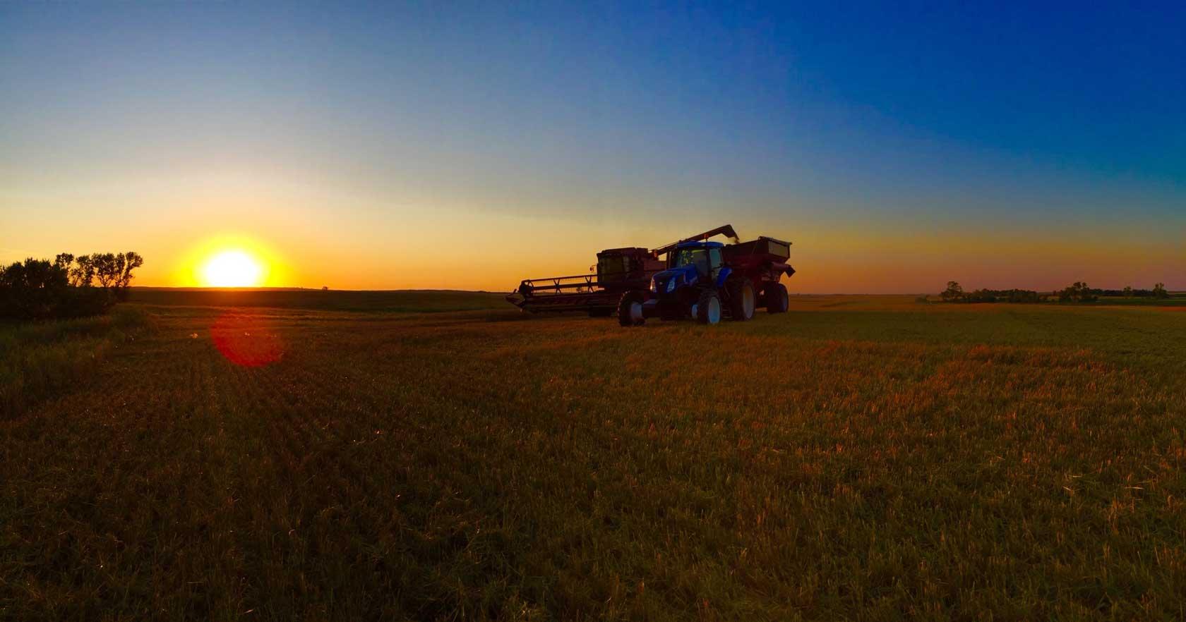 2015-Barley